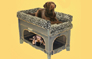 Tell me more about Co-Sleeper® brand Pet Bunk Bed™