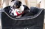 Tell me more about Cadillac® Lookout II Pet Car Seat