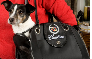 Tell me more about Cadillac® Pet Tote Bag