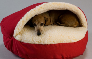 Tell me more about Snoozer® Cozy Cave Pet Bed