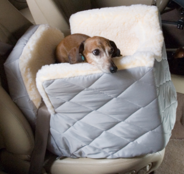 Lookout I Car Seat